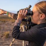 Birdwatching festival returns to Sagres in October